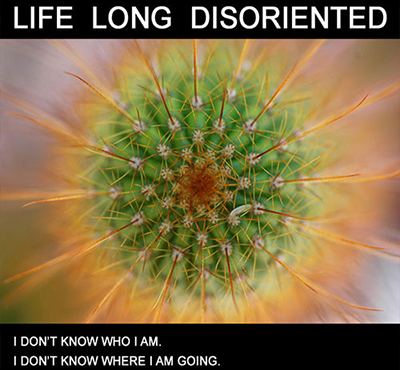 Life Long Disoriented - Positive Thinking Network - David J. Abbott M.D.