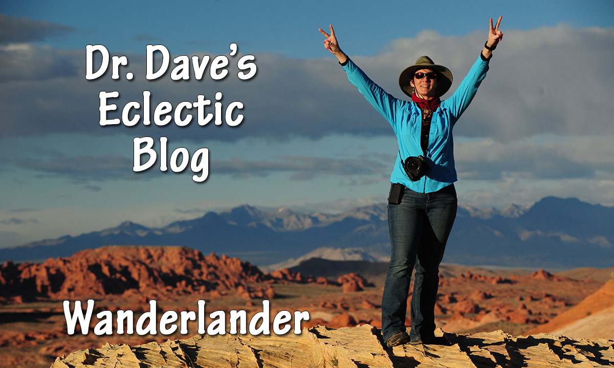Dr. Dave's Eclectic Blog
