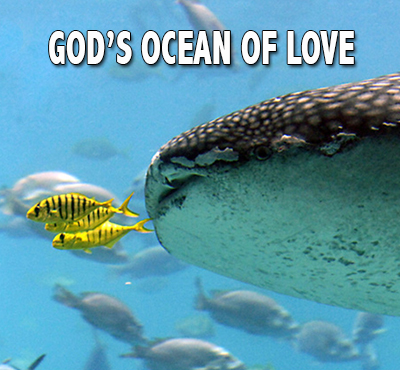 God's ocean of love - Positive Thinking Network - Positive Thinking Doctor - David J. Abbott M.D.