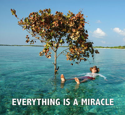 Everything is a miracle - Positive Thinking Doctor - David J. Abbott M.D.