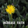 Increase Faith - Positive Thinking  Doctor - David J. Abbott M.D.