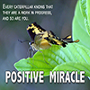 Positive Miracle - Positive Thinking Doctor - David J. Abbott M.D.
