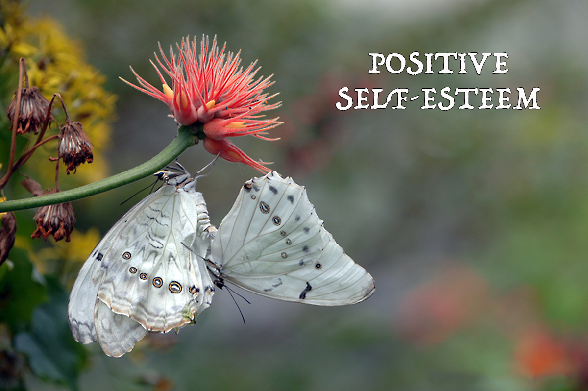 Positive Self-Esteem - David J. Abbott M.D. - Positive Thinking Doctor