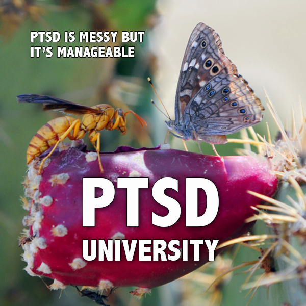 PTSD University - PTSD is messy but it's manageable - Positive Thinking Doctor - David J. Abbott M.D.